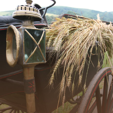 Agriculteur bio 64, Agriculteur bio Pays Basque, Pain bio 64, Pain bio Pays Basque, Producteur de blé bio 64, Producteur de blé bio Pays Basque, Producteur de pain bio 64, Producteur de pain bio Pays Basque, Visite de moulin 64, Visite de moulin Pays Basque